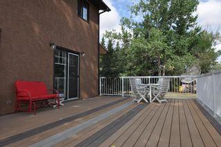Photo 43: 56005 RR 254: Rural Sturgeon County House for sale : MLS®# E4259157