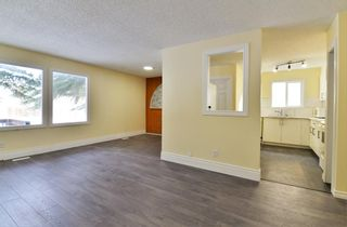 Photo 15: 3028 33A Avenue SE in Calgary: Dover Detached for sale : MLS®# A1069811