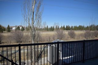 Photo 47: 216 ASPENMERE Close: Chestermere Detached for sale : MLS®# A1061512
