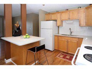 Photo 16: 101 835 19 Avenue SW in CALGARY: Lower Mount Royal Condo for sale (Calgary)  : MLS®# C3603900