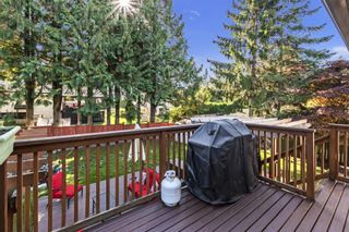 Photo 6: 26456 30A Avenue in Langley: Aldergrove Langley House for sale : MLS®# R2413273