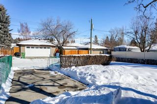 Photo 41: 6412 Dalton Drive NW in Calgary: Dalhousie Detached for sale : MLS®# A1071648