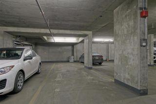 Photo 23: Downtown in Edmonton: Zone 12 Condo for sale : MLS®# E4106166