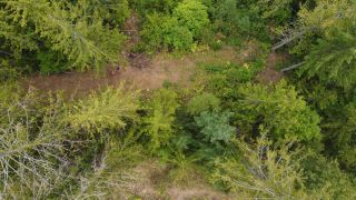 Photo 3: 8655 PROCTER EAST ROAD in Procter: Vacant Land for sale : MLS®# 2460291