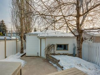 Photo 45: 533 50 Avenue SW in Calgary: Windsor Park Detached for sale : MLS®# A1063858