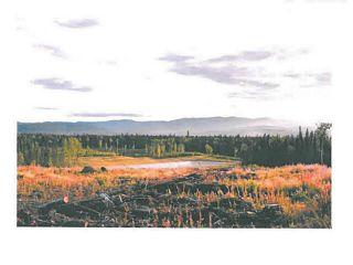 """Photo 13: LOT 8 BELL Place in Mackenzie: Mackenzie -Town Land for sale in """"BELL PLACE"""" (Mackenzie (Zone 69))  : MLS®# N227301"""
