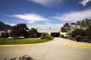 Photo 19: 41552 RAE Road in Squamish: Brackendale 1/2 Duplex for sale : MLS®# R2391557
