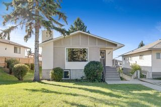 Main Photo: 2815 11 Avenue SE in Calgary: Albert Park/Radisson Heights Detached for sale : MLS®# A1149863