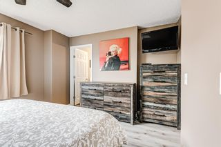 Photo 23: 53 Copperfield Court SE in Calgary: Copperfield Row/Townhouse for sale : MLS®# A1138050