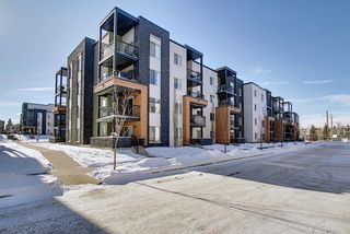 Main Photo: 1214 1317 27 Street SE in Calgary: Albert Park/Radisson Heights Apartment for sale : MLS®# A1070398