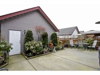 Photo 10: 6564 193A Street in Surrey: Clayton House for sale (Cloverdale)  : MLS®# F1306851