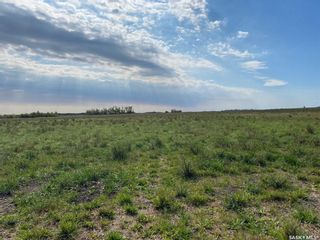 Photo 8: Good Lake Land in Good Lake: Farm for sale (Good Lake Rm No. 274)  : MLS®# SK873878