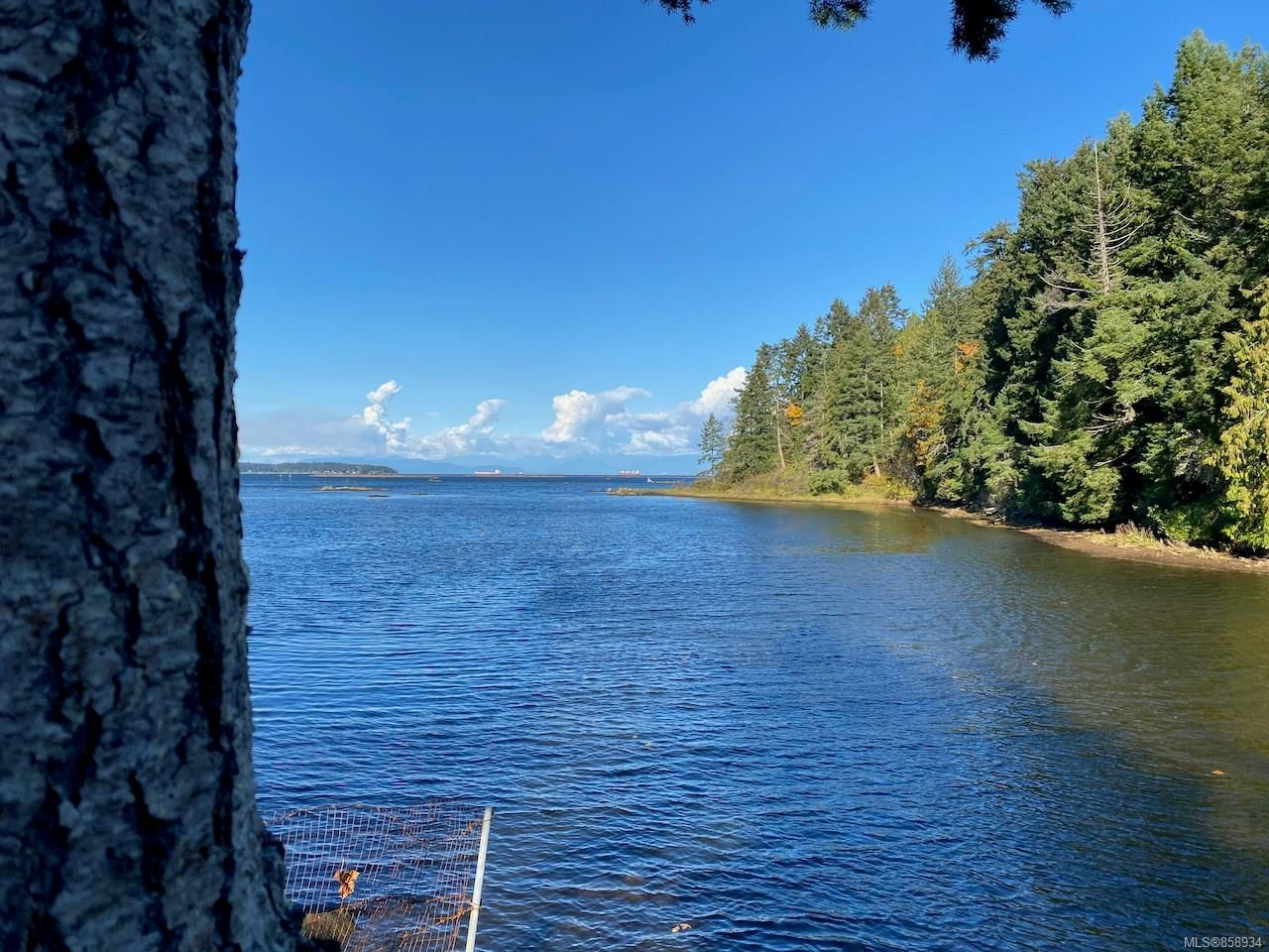 Main Photo: 20 Maki Rd in : Na Chase River Unimproved Land for sale (Nanaimo)  : MLS®# 858934