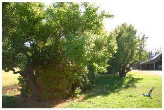 Photo 17: 4820 Northeast 30 Street in Salmon Arm: North Broadview House for sale (NE Salmon Arm)  : MLS®# 10143037