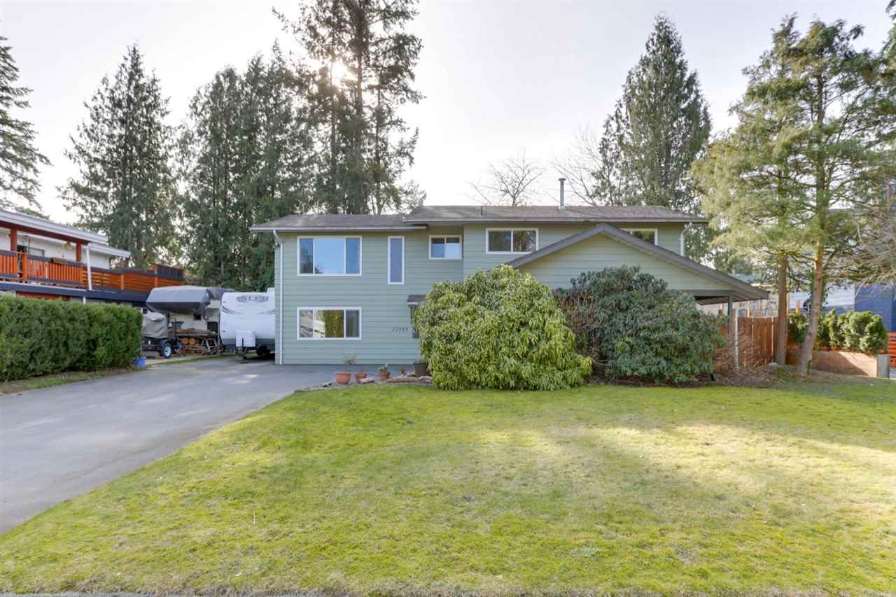 Main Photo: 22588 LEE Avenue in Maple Ridge: East Central House for sale : MLS®# R2539513