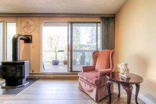 Photo 7: 301 1229 Cameron Avenue SW in Calgary: Lower Mount Royal Apartment for sale : MLS®# A1095141