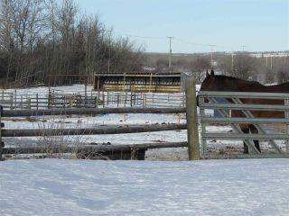 "Photo 19: 14822 ROSE PRAIRIE Road in Fort St. John: Fort St. John - Rural W 100th House for sale in ""NORTH PINE"" (Fort St. John (Zone 60))  : MLS®# R2335968"