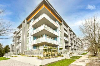 Main Photo: 113 5289 CAMBIE Avenue in Vancouver: South Vancouver Condo for sale (Vancouver East)  : MLS®# R2559285