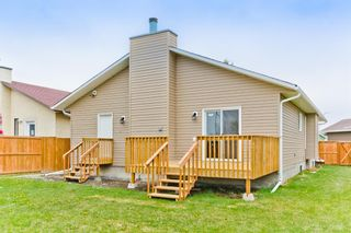 Photo 37: 45 Martinview Crescent NE in Calgary: Martindale Detached for sale : MLS®# A1112618