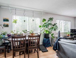 Photo 5: 21075 122 Avenue in Maple Ridge: Northwest Maple Ridge House for sale : MLS®# R2534001