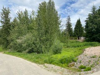 Photo 1: 30 Walsh Road in Blind Bay: SHUSWAP LAKE ESTATES Vacant Land for sale : MLS®# 10235083