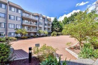 """Photo 20: 223 12101 80 Avenue in Surrey: Queen Mary Park Surrey Condo for sale in """"Surrey Town Manor"""" : MLS®# R2177547"""
