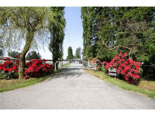 Photo 1: 13585 CEDAR WAY in : North Maple Ridge House for sale : MLS®# V936252
