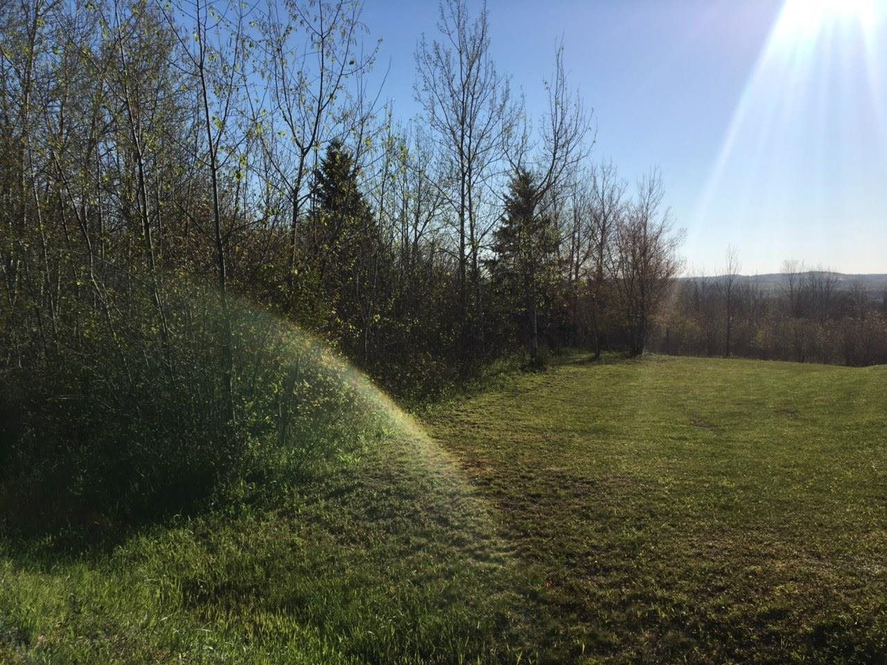 Main Photo: Lot 11-2 Douglas Road in Alma: 108-Rural Pictou County Vacant Land for sale (Northern Region)  : MLS®# 202113696