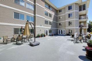 Photo 44: 302 8715 82 Avenue in Edmonton: Zone 17 Condo for sale : MLS®# E4248630