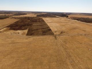 Photo 6: 47513 Highway 22: Rural Brazeau County Detached for sale : MLS®# A1060203
