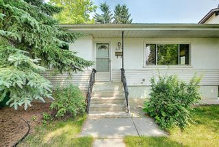 Photo 46: 420 Thornhill Place NW in Calgary: Thorncliffe Detached for sale : MLS®# A1146639
