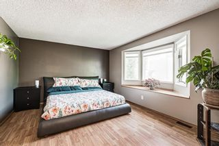Photo 16: 51 Millrise Way SW in Calgary: Millrise Detached for sale : MLS®# A1126137