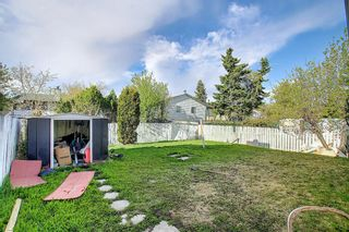 Photo 36: 20 Whitefield Close NE in Calgary: Whitehorn Detached for sale : MLS®# A1101190