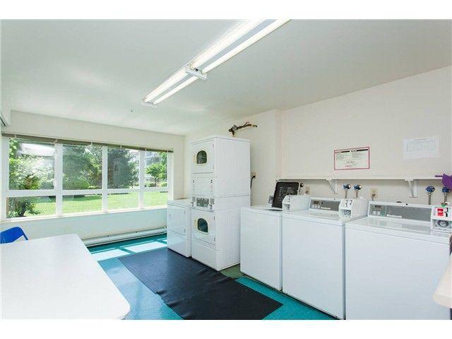 Photo 12: Photos: 104 3480 YARDLEY AVENUE in : Collingwood VE Condo for sale : MLS®# V1099525