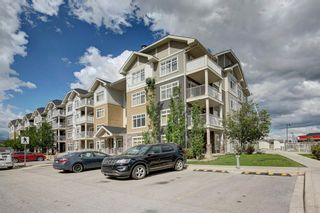 Photo 29: 2412 155 Skyview Ranch Way NE in Calgary: Skyview Ranch Apartment for sale : MLS®# A1120329