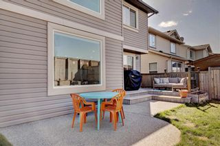 Photo 33: 205 CHAPALINA Mews SE in Calgary: Chaparral Detached for sale : MLS®# C4241591