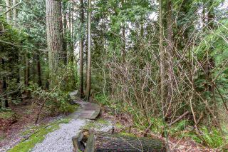 """Photo 20: 45 2990 PANORAMA Drive in Coquitlam: Westwood Plateau Townhouse for sale in """"WESTBROOK VILLAGE"""" : MLS®# R2235190"""