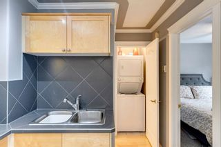 Photo 19: 202 343 4 Avenue NE in Calgary: Crescent Heights Apartment for sale : MLS®# A1118718