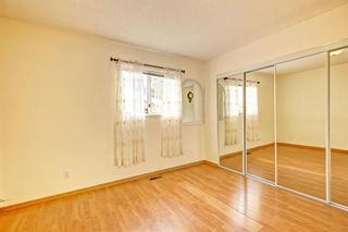 Photo 13: 25 Martinview Crescent NE in Calgary: Martindale Detached for sale : MLS®# A1107227