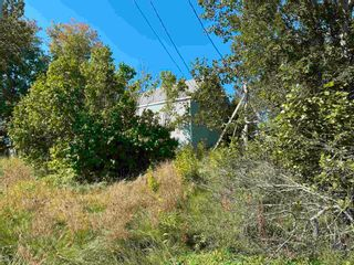 Photo 3: 507 Thorburn Road in Thorburn: 108-Rural Pictou County Vacant Land for sale (Northern Region)  : MLS®# 202124108