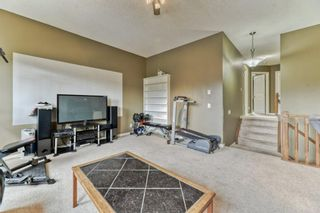 Photo 24: 199 Sagewood Drive SW: Airdrie Detached for sale : MLS®# A1119467
