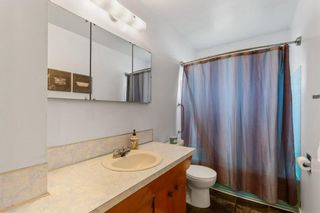 Photo 12: 2339 Maunsell Drive NE in Calgary: Mayland Heights Detached for sale : MLS®# A1059146