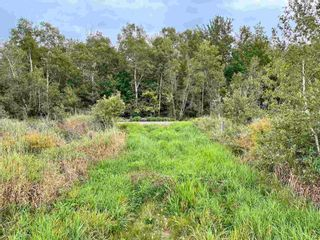 Photo 4: Lot Brooklyn Street in North Kingston: 404-Kings County Vacant Land for sale (Annapolis Valley)  : MLS®# 202123863
