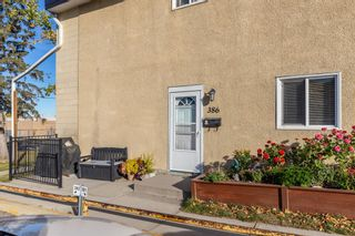 Photo 25: 386 2211 19 Street NE in Calgary: Vista Heights Row/Townhouse for sale : MLS®# A1149478
