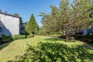 """Photo 15: 162 200 WESTHILL Place in Port Moody: College Park PM Condo for sale in """"Westhill Place"""" : MLS®# R2183765"""