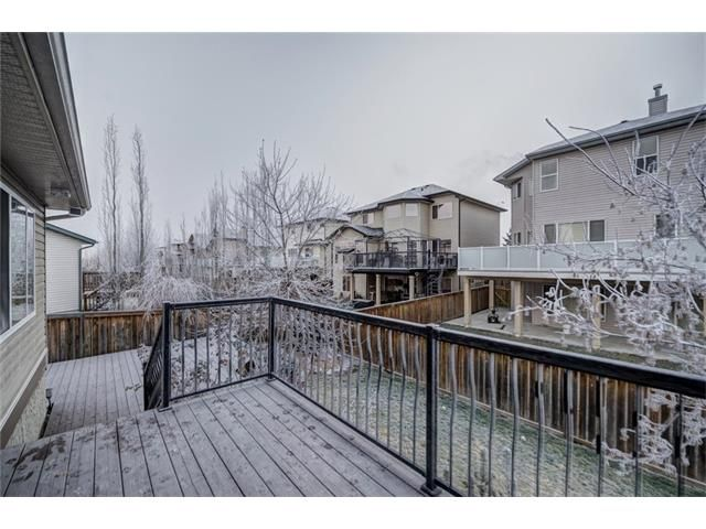 Photo 49: Photos: 137 COVE Court: Chestermere House for sale : MLS®# C4090938
