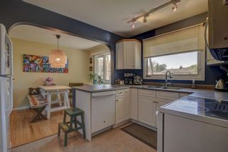 Photo 10: 11711 40 Avenue in Edmonton: Zone 16 House for sale : MLS®# E4247223