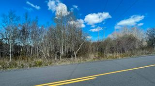 Photo 6: Lot Crisp Road in South Williamston: 400-Annapolis County Vacant Land for sale (Annapolis Valley)  : MLS®# 202115469