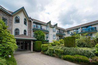 "Photo 1: 222 27358 32 Avenue in Langley: Aldergrove Langley Condo for sale in ""Willowcreek Estates"" : MLS®# R2462020"