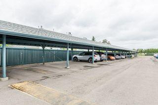 Photo 39: 307 9620 174 Street in Edmonton: Zone 20 Condo for sale : MLS®# E4253956
